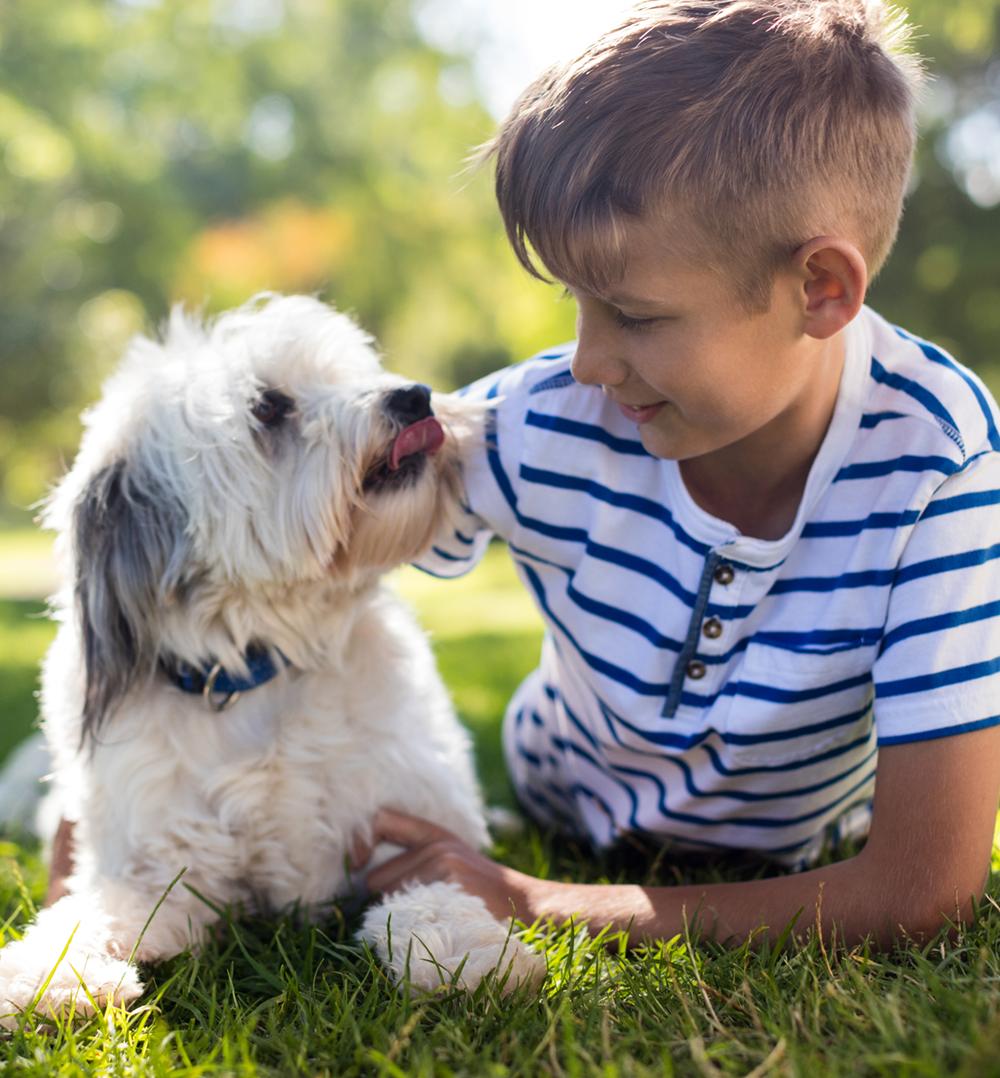 boy-with-dog-in-park-87UQJA4